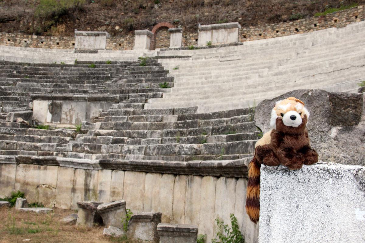 panda v Makedonii