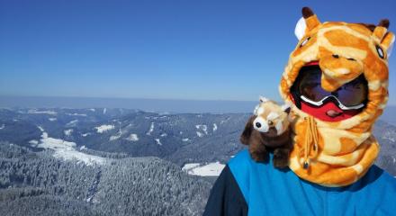 panda na lyžovačce v Rakousku